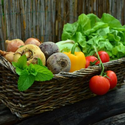 Vegetable Gardening Mistakes You Should Not Make