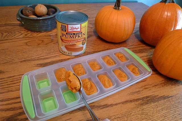 frozen-pumpkin-cubes.jpg