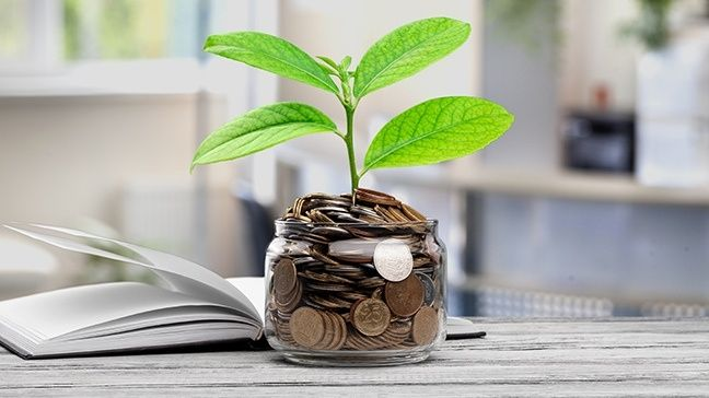 Make Your Money Grow Without Investing It