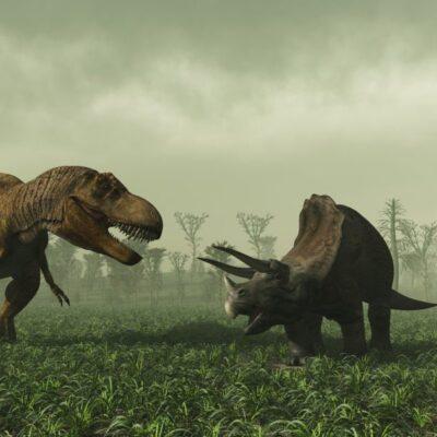 "Visiting The ""Real"" Jurassic Park"