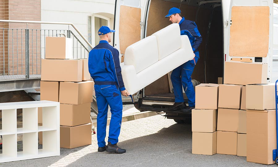 Professional Movers2.jpg