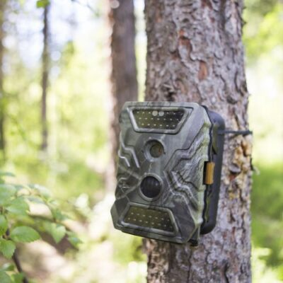 5 Reasons hunters will prefer to use trail game cameras